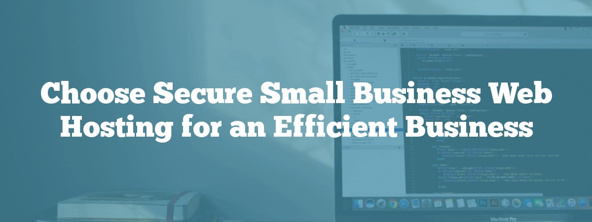Choose Secure Small Business Web Hosting for an Efficient Business
